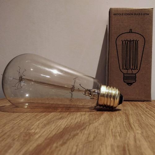 Ampoule déco vintage Cleveland 64mm, 60W, E27